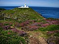 Strumble Head Lighthouse - geograph.org.uk - 537671.jpg