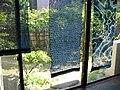 Sunlight filters through tied-and-indigo-dyed (shibori) fabric.jpg