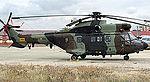 Super Puma (5083574326).jpg