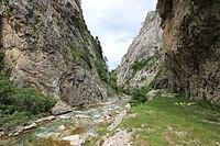 Sutjeska River 1.jpg