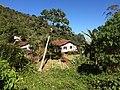 TRILHA MULHER DE PEDRA - panoramio (1).jpg