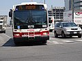 TTC bus on Queen's Quay, at Lower Jarvis, 2016 07 05 (2).JPG - panoramio.jpg