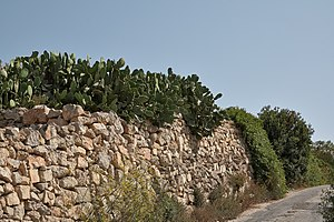 Rubble - Rubble wall near Dingli, Malta