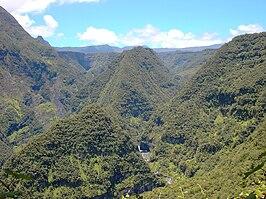 Takamaka-Réunion.jpg
