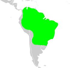 מפת תפוצה של הטפיר הברזילאי