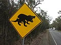 Tasmanian Devil roadsign.jpg