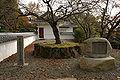 Tatsuno Castle11n4592.jpg