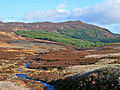 The Boltachan Burn - geograph.org.uk - 706477.jpg