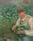 The Gardener - Old Peasant with Cabbage.jpg