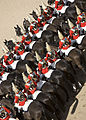 The Household Cavalry MOD 45150155.jpg