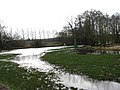 The River Wensum - geograph.org.uk - 667291.jpg
