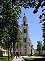 The church towers in Vilnius, Architecture (7628641746).jpg