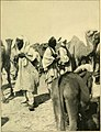 The gateway to the Sahara; observations and experiences in Tripoli (1909) (14598169810).jpg