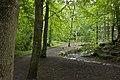 The path through Borsdane Wood (geograph 2417498).jpg