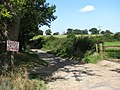 The quiet lane past Hall Farm - geograph.org.uk - 553884.jpg