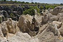 Nauru-Economy-The site of secondary mining of Phosphate rock in Nauru, 2007. Photo- Lorrie Graham (10729889683)