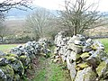 The walled lower section of the Braich-y-dinas path - geograph.org.uk - 413119.jpg