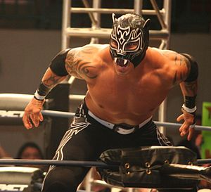 Verano de Escándalo (2008) - Extreme Tiger, who (along with Halloween) lost the AAA World Tag Team Championship at Verano de Escándalo