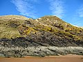 Tilted rock strata, Hackley Bay Beach - geograph.org.uk - 375549.jpg