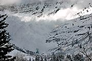 Avalanche on the backside (East) of Mt. Timpanogos, Utah at Aspen Grove trail