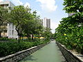Tin Shui Wai Cycling Path 200709.jpg