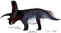 Titanoceratops life restoration.jpg