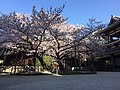 Tocho-ji-Hakata.jpg