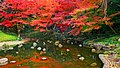Tokyo-Koishikawa Korakuen Garden-m.jpg