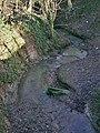 Top Dumble stream (2) - geograph.org.uk - 1127285.jpg