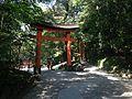 Toriis of Lower Shrine and Upper Shrine of Usa Shrine.JPG