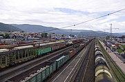 Tory na stacji kolejowej Sludianka.jpg