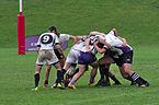 Tournoi de rugby à 7 - 20141012 - Genève - 23.jpg