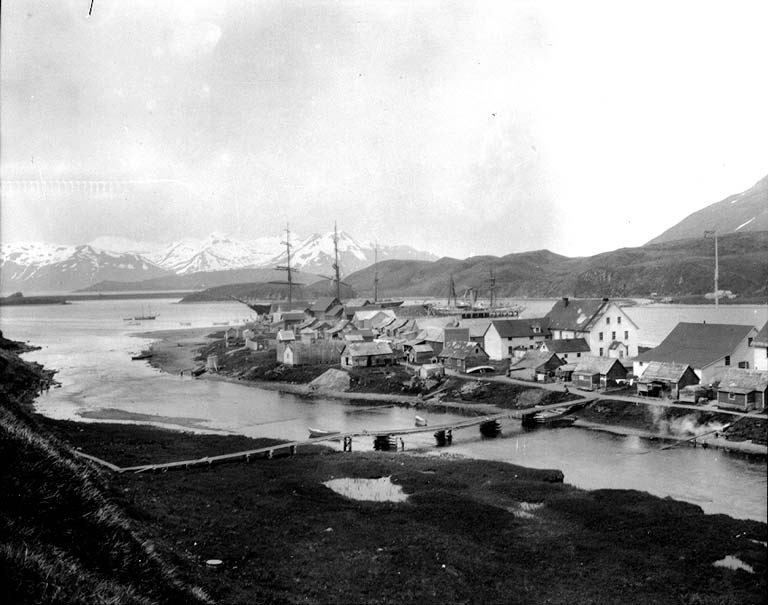 Town of Unalaska, Alaska, June 1906 (COBB 151).jpeg