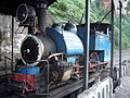 Toy Train Darjeeling West Bengal India.JPG