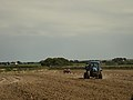 Tractors cultivating and fertilizing a field in Brittany 01.jpg