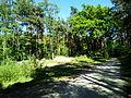 Trail- Irgendwo im Niergendwo.jpg