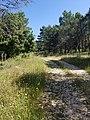 Trailhead from SP52b.jpg