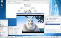 Trinity Desktop Env. snapshot2.png