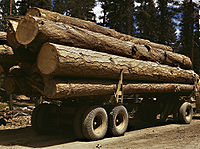 Truck load of ponderosa pine, Edward Hines Lumber Co, operations in Malheur National Forest, Grant County, Oregon, July 1942.jpg