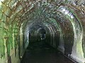 Tunnel Vision - geograph.org.uk - 1316942.jpg
