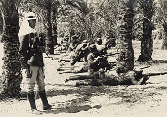 Battle of Bir el Abd - Turkish troops in the Sinai