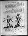 Two human figures with abnormalities Wellcome L0033293.jpg