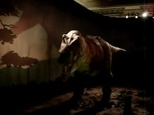 File:Tyrannosaurus NHM London.ogv