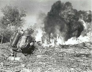 M2 flamethrower - Image: U Sm 2flamethrower