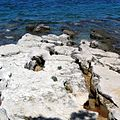 Umag Hotel Melia Coral - panoramio.jpg