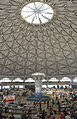 Under The Dome (220641959).jpeg