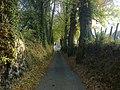 Une route bordée de talus et d'arbres.jpg
