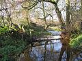 Upstream - geograph.org.uk - 287725.jpg