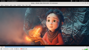 How to install new audio visualizations in vlc.