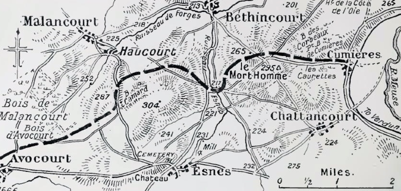 Verdun and vicinity, May 1916.png